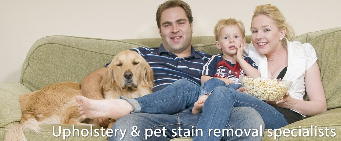 Upholstery & Pet Stain Removal Specialists in Southend-on-Sea, Essex (UK)